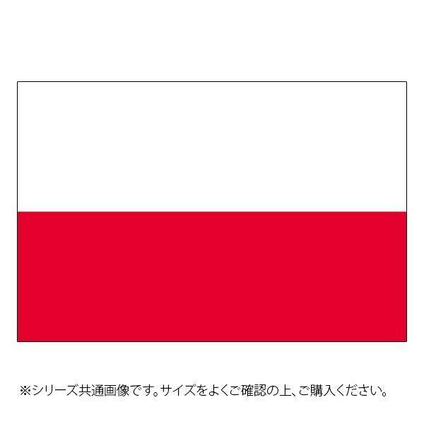 N国旗 ポーランド No.2 23456 W1350×H900mm セール 卓抜