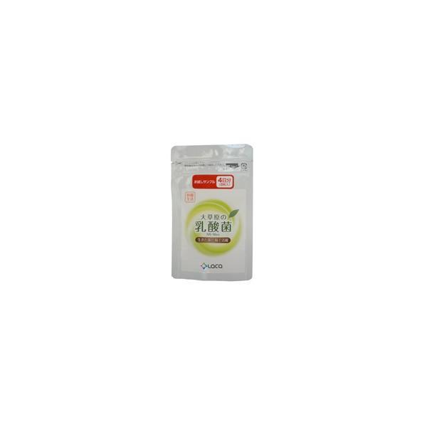 大草原の乳酸菌 NS-Max 8カプセル入×2袋セット お試しサンプル|ikesma
