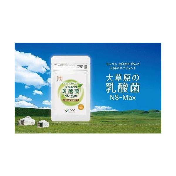 大草原の乳酸菌 NS-Max 8カプセル入×2袋セット お試しサンプル|ikesma|02