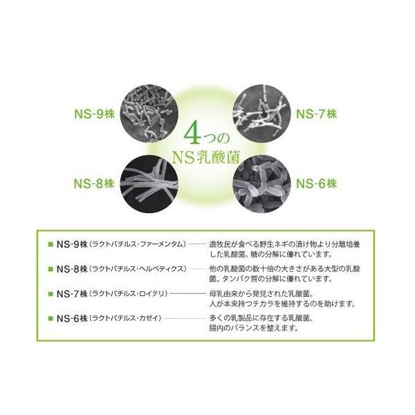 大草原の乳酸菌 NS-Max 8カプセル入×2袋セット お試しサンプル|ikesma|03