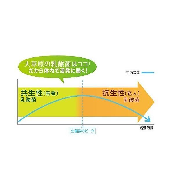 大草原の乳酸菌 NS-Max 8カプセル入×2袋セット お試しサンプル|ikesma|04