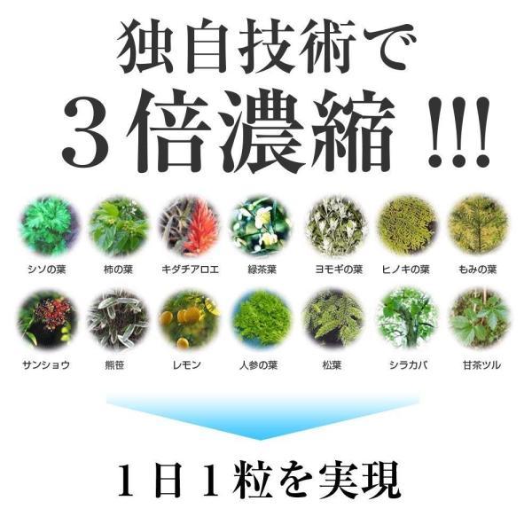 臭ピタッ 31粒 口臭サプリ 体臭 汗 送料無料|ikesma|04