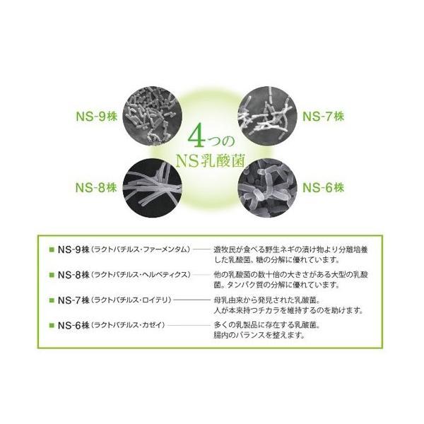 乳酸菌 サプリ NS-Max 36カプセル入 ラクア|ikesma|03