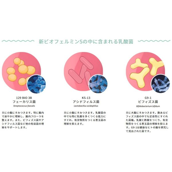新ビオフェルミンS錠 540錠 ビオフェルミン製薬 大正製薬 ikesma 07