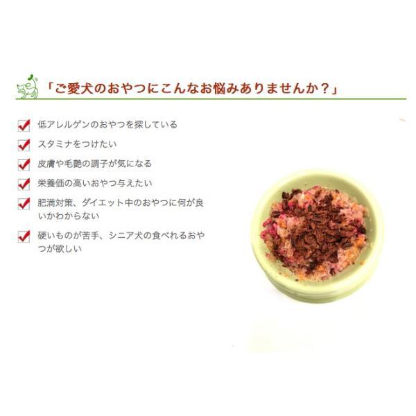 犬 おやつ 低脂肪 無添加  国産 丹波産 猪スティック 50g  イリオスマイル ポイント消化|iliosmile|04