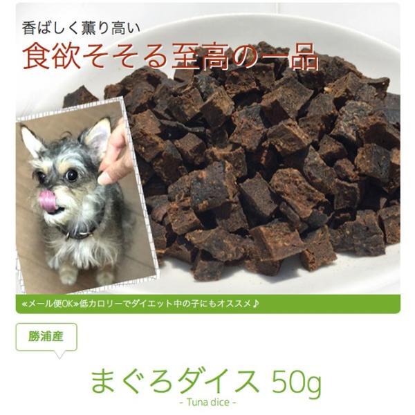 犬 おやつ 低脂肪 無添加 国産 勝浦産まぐろダイス 50g  イリオスマイル ポイント消化|iliosmile|03