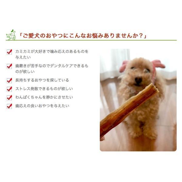 犬 おやつ ガム 無添加 国産 神戸牛ホルバー 50g イリオスマイル ポイント消化|iliosmile|04
