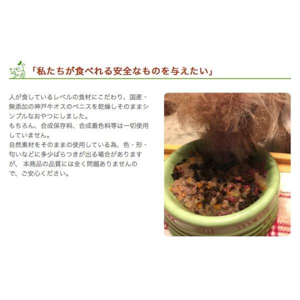 犬 おやつ ガム 無添加 国産 神戸牛ホルバー 50g イリオスマイル ポイント消化|iliosmile|06