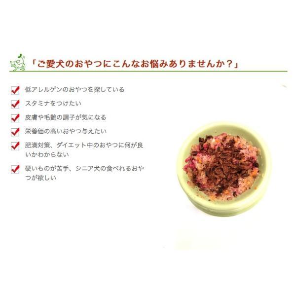 犬 おやつ 低脂肪 無添加 国産 丹波産 猪スティック 150g  イリオスマイル ポイント消化|iliosmile|04