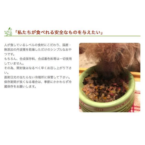 犬 おやつ 低脂肪 無添加 国産 丹波産 猪スティック 150g  イリオスマイル ポイント消化|iliosmile|06