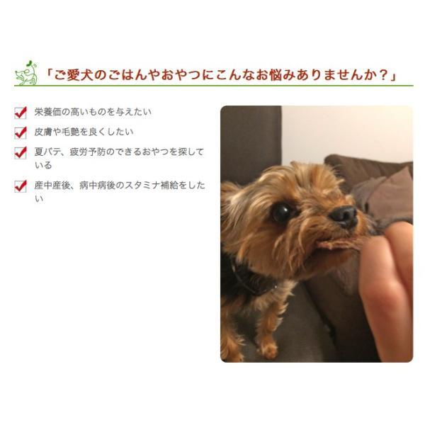 犬 おやつ 無添加 国産 神戸ポーク 豚ハツ 150g イリオスマイル ポイント消化|iliosmile|04