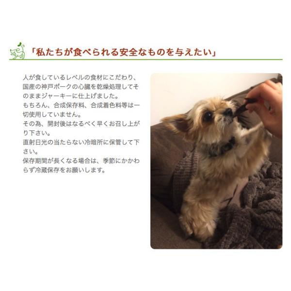 犬 おやつ 無添加 国産 神戸ポーク 豚ハツ 150g イリオスマイル ポイント消化|iliosmile|06