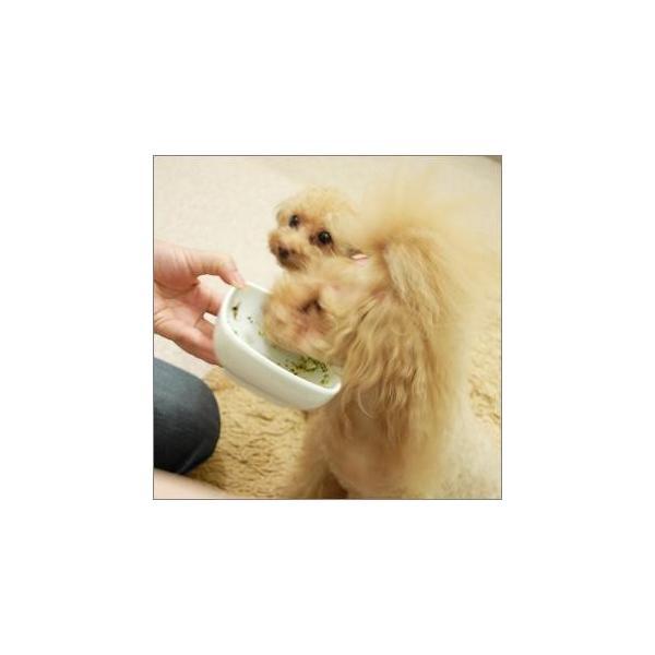 プレゼント付 犬 手作り食 無添加 国産 手作りごはんの素 健康一番570g イリオスマイル ポイント消化 iliosmile 03