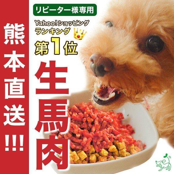ドッグフード馬肉犬国産生肉熊本直送新鮮生馬肉パラパラミンチ300g×3袋イリオスマイル消化