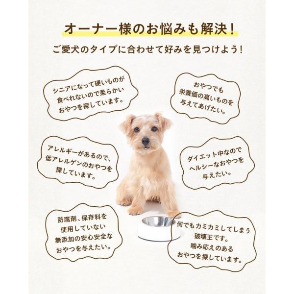 犬 おやつ 無添加 大袋 大型犬 詰め合わせ 送料無料 20種より選べる4種 ヌイセット 大型犬 多頭飼い向け イリオスマイル|iliosmile|07