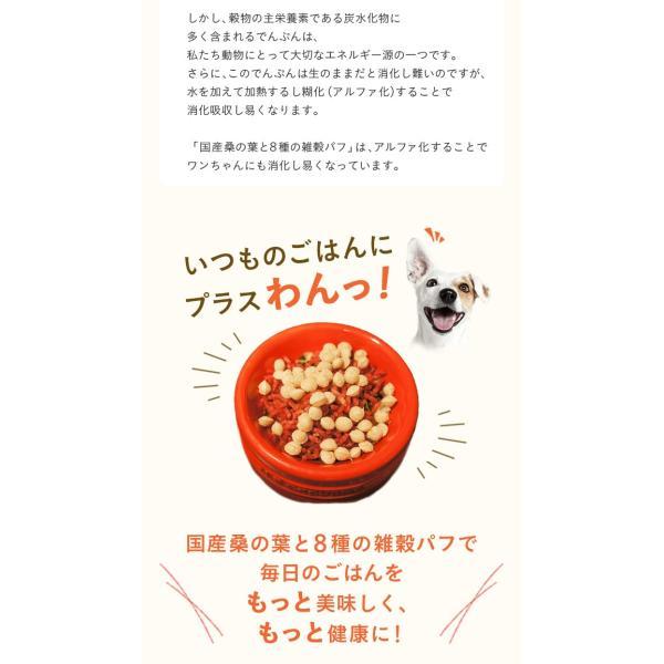 犬 おやつ 手作り食 無添加 国産マルベリーと8種の雑穀パフ 50g イリオスマイル ポイント消化|iliosmile|11
