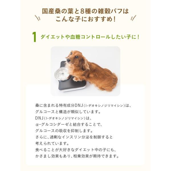 犬 おやつ 手作り食 無添加 国産マルベリーと8種の雑穀パフ 50g イリオスマイル ポイント消化|iliosmile|12
