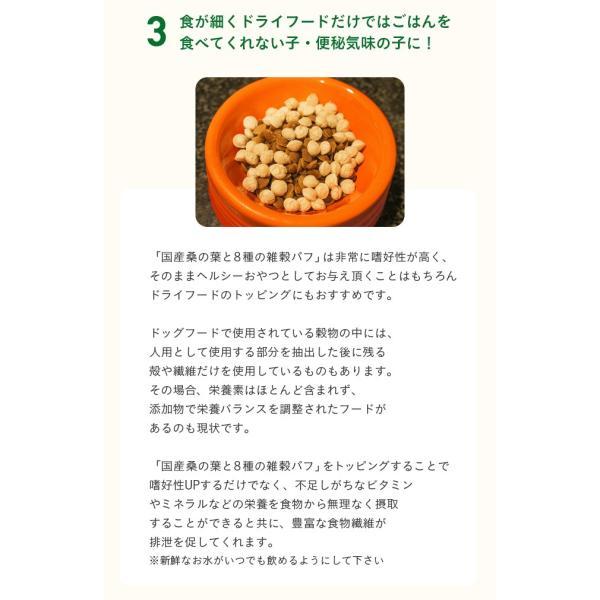 犬 おやつ 手作り食 無添加 国産マルベリーと8種の雑穀パフ 50g イリオスマイル ポイント消化|iliosmile|14