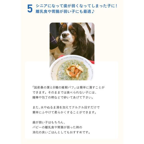 犬 おやつ 手作り食 無添加 国産マルベリーと8種の雑穀パフ 50g イリオスマイル ポイント消化|iliosmile|16