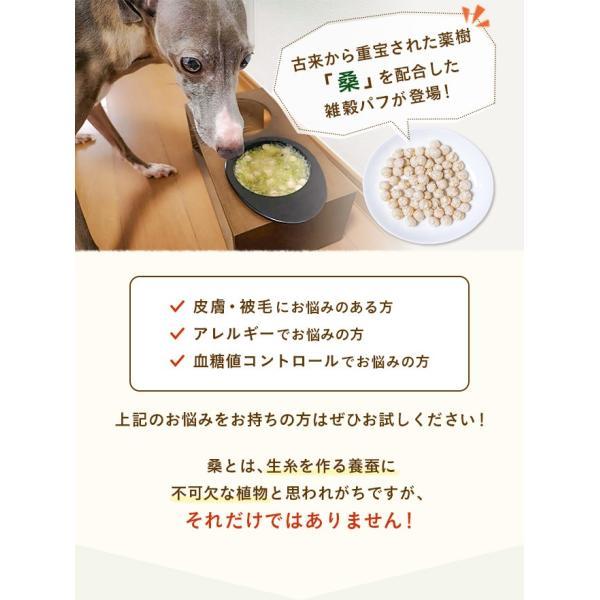 犬 おやつ 手作り食 無添加 国産マルベリーと8種の雑穀パフ 50g イリオスマイル ポイント消化|iliosmile|04