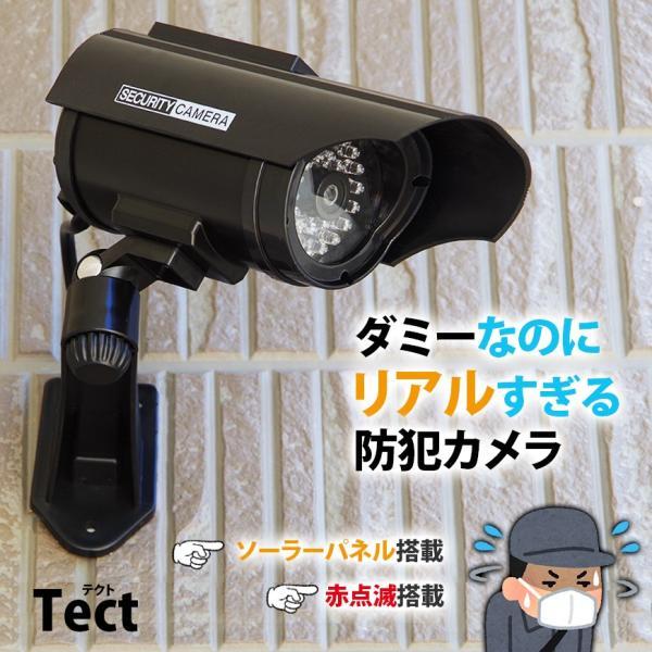防犯カメラ ダミーカメラ ソーラー 電池交換不要 LED tect|illumi|02