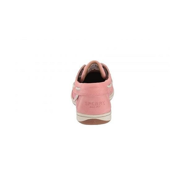Sperry スペリー レディース 女性用 シューズ 靴 ボートシューズ Koifish Mesh - Nantucket Red