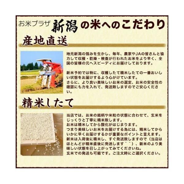 お米 5kg ミルキークイーン 30年産 新潟産  送料無料 (北海道、九州、沖縄除く) imagi 07