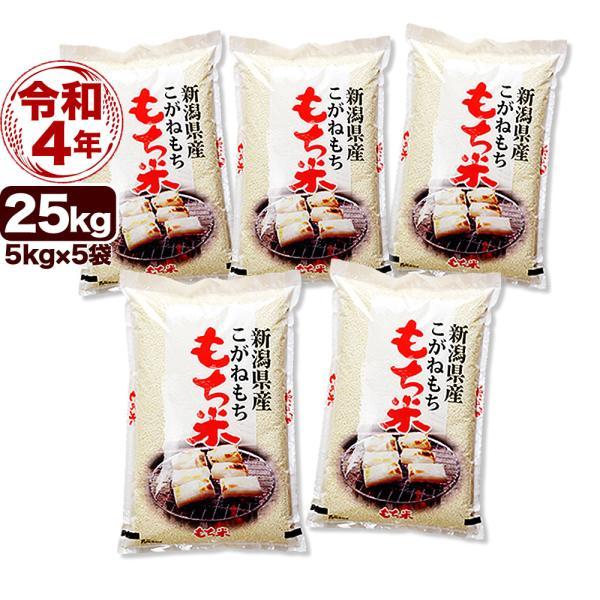 白米 こがねもち米 令和2年産 新潟産 白米 25kg (5kg 5袋) 送料無料 (北海道、九州、沖縄除く)