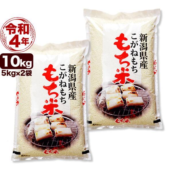 新米 白米 10kg こがねもち米 5kg×2袋 令和3年産 新潟産 送料無料 (北海道、九州、沖縄除く)