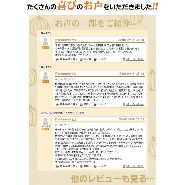 #訳あり 淡路島玉ねぎ10K#|imaifarm|06