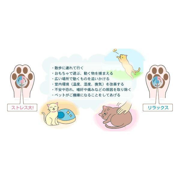 ストレスチェッカー:肉きゅうパッチ(犬用・猫用)〜〒郵送可¥320|imanando|05