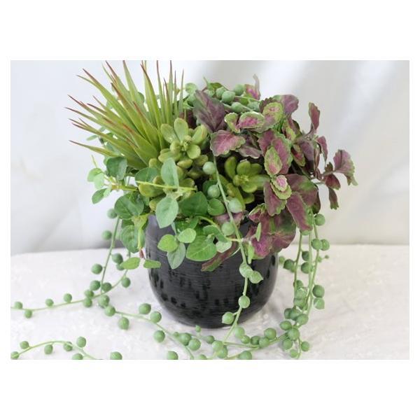 造花 観葉植物 多肉植物 インテリア P-59|impish