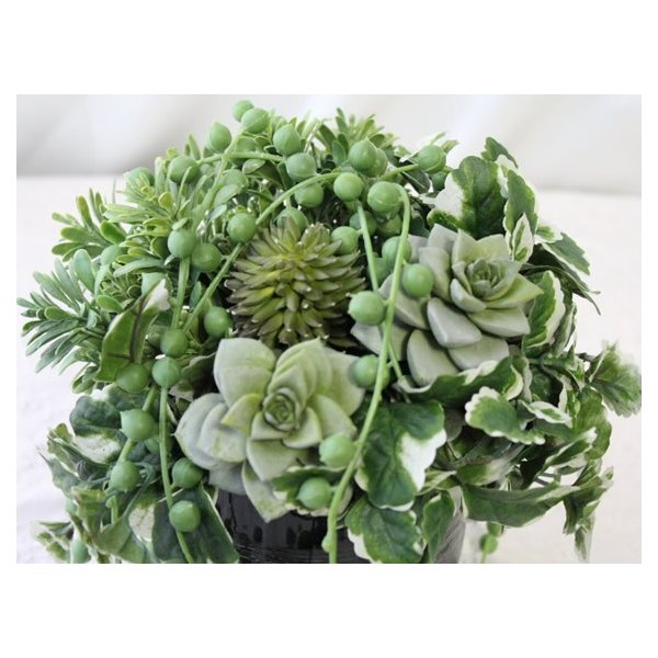 造花 観葉植物 多肉植物 インテリア P-60|impish|02