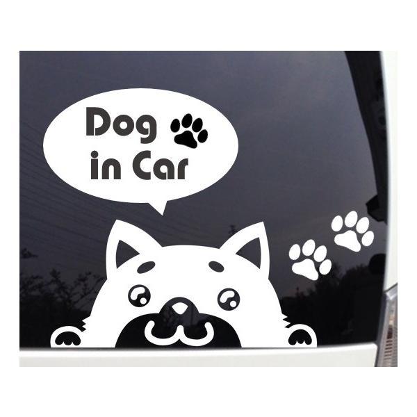 覗き込む柴犬 かわいいカッティングステッカー|importedstickers|02