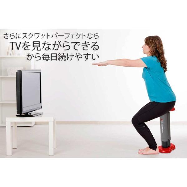ジムフォーム スクワット ダイエット 器具 パーフェクト スクワットマシン 椅子 腹筋 トレーニング 筋トレ 下半身 ぽっこりお腹 お尻 太もも ヒップアップ|impossible-dream|06