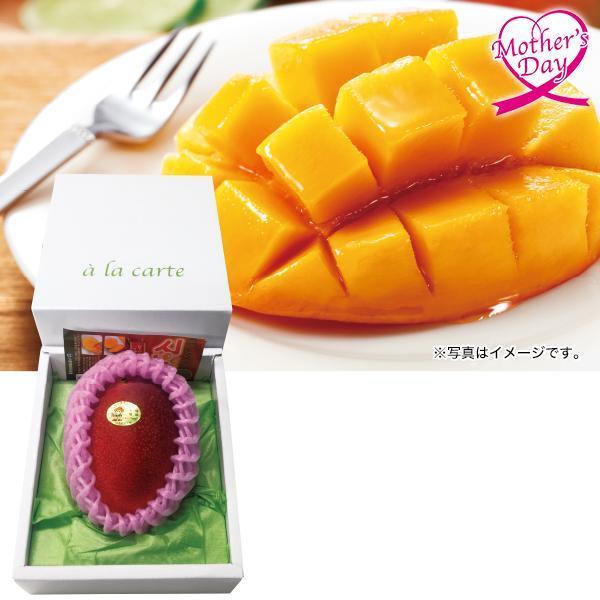 母の日六花亭六花セレクト缶型番:17個入ギフトプレゼントチョコレートクッキー