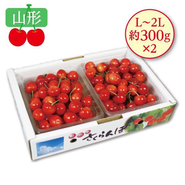 お中元 御中元 2021 福岡県産 JA福岡八女 幸水梨 ギフト お取り寄せ 送料無料 フルーツ なし