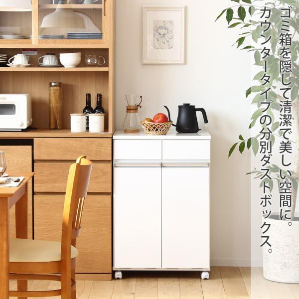 ダストボックス 2Dタイプ 完成品 (代引不可) 23703|interior-works|03
