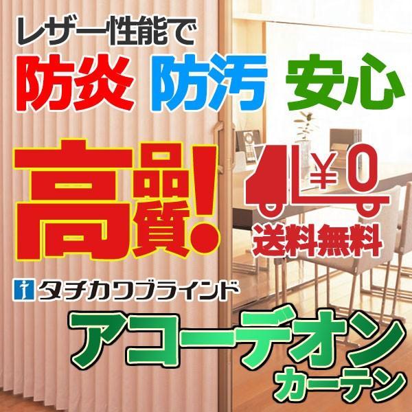 間仕切 アコーデオンカーテン ドア プレーンベーシック(リドNo.6411〜6413)