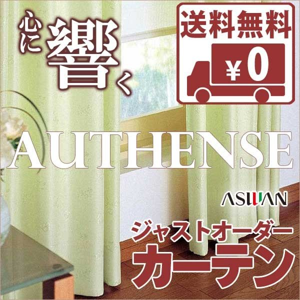 カーテン オーダーイージーカーテン アスワン オーセンス SHAKOU 遮光 E4340 E4341 E4342 ハイグレード縫製約2倍ヒダお買得セット