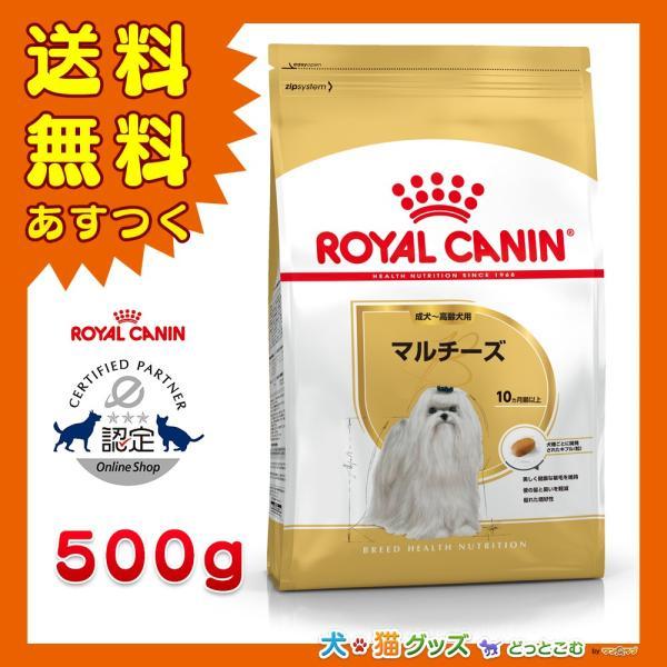 ロイヤルカナン マルチーズ 専用フード 成犬〜高齢犬用 500g 送料無料 あすつく|inuneko-royalcanin