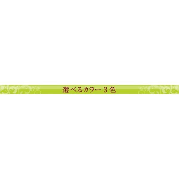 16日〜19日プレミアム会員5%OFF★ 座椅子職人シリーズ 専用カバー ioo 04