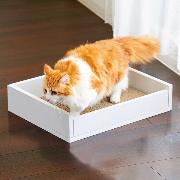 猫 ねこ ベッド つめとぎ ホワイトファニチャー スクラッチベッド|ip-plus|02