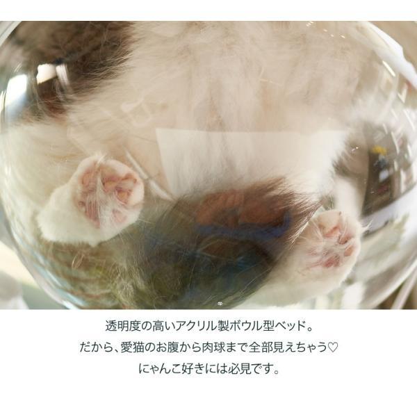 ネコ ベッド スタンド おしゃれ インテリア  キャットクリアカプセル テーブル|ip-plus|02