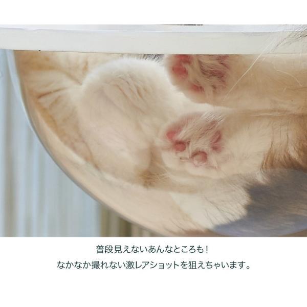 ネコ ベッド スタンド おしゃれ インテリア  キャットクリアカプセル テーブル|ip-plus|03