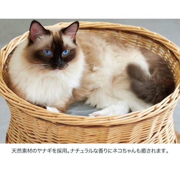 ねこ 猫 ハウス おうち 2段 多頭飼い ベッド 柳 天然素材 YANAGI キャットチムニー ip-plus 03