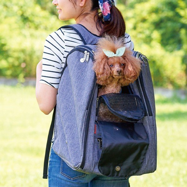 犬 猫 ペットキャリー 軽量 フルカバー メッシュ バックパック・アドベンチャー|ip-plus