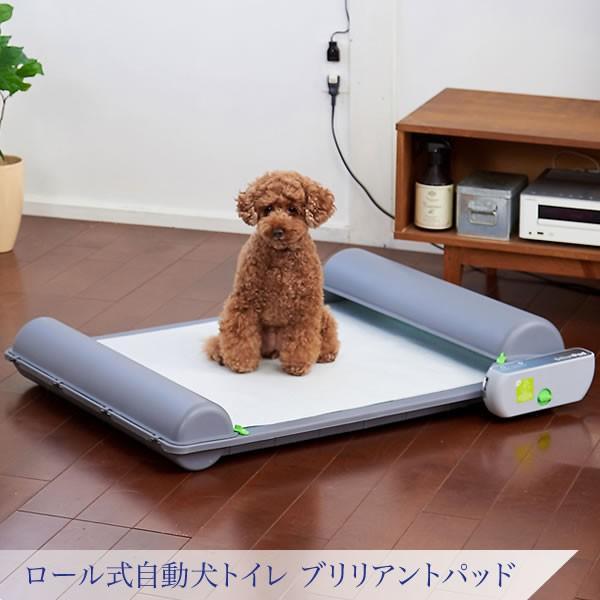 ロール式自動犬トイレ ブリリアントパッド|ip-plus