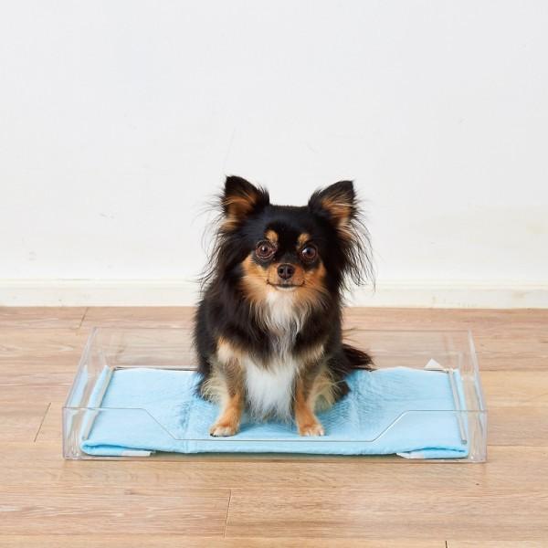 クリアレット2(S) (レギュラーシーツサイズ) [犬 トイレ おしゃれ 透明 ドッグ アクリル デザイナーズ]|ip-plus|10