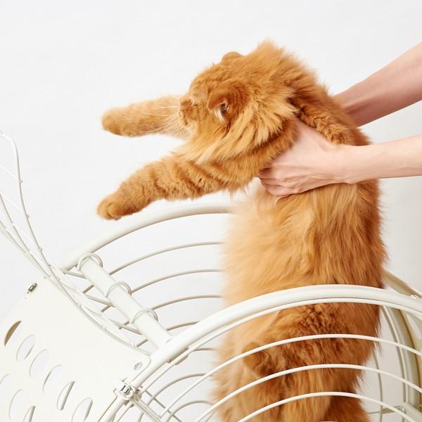【大型商品】 タイムトンネル 猫 ネコ キャット ケージ オシャレ TIME TUNNEL PET CRATE【大型送料・同梱不可】|ip-plus|03